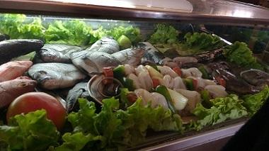 assortment-of-fish-in-portuguese-casca